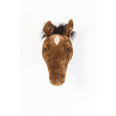 Wild & Soft dierenkop paard
